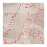 Anemone I Prints by Stephanie Han