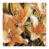 Apricot Dream II Prints by Lane Ashfield