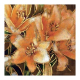 Apricot Dream I Prints by Lane Ashfield