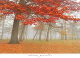Autumn Mist I Plakater af Donna Geissler