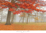 Autumn Mist I Prints by Donna Geissler
