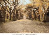 Central Park I Art by Tim Wampler