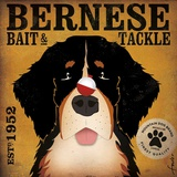 Bernese Bait & Tackle Prints by Stephen Fowler