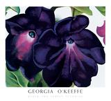 Black and Purple Petunias Print by Georgia O'keeffe