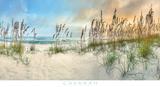 Beach Pastels Posters by Doug Cavanah