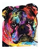 Bulldog Print by Dean Russo