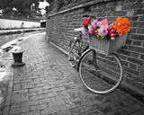 Bicycle of Love I Plakaty autor Assaf Frank