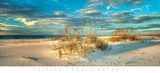 Beach Dream II Posters by Doug Cavanah