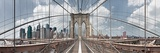 Brooklyn Bridge Prints by Shelley Lake