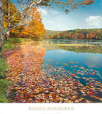 Bass Lake in Autumn II Posters by Marty Hulsebos
