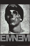 Eminem- Skull Face Print
