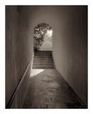 Banc de Jardin 78 Prints by Alan Blaustein