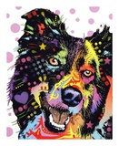 Border Collie Print by Dean Russo