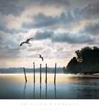 Circling Skies Kunst af William Vanscoy