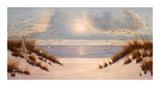 Coastal Dunes Print by Diane Romanello