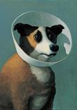 Michael Sowa - Dog with Cone - Reprodüksiyon