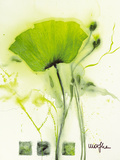 Coquelicot Vert I Poster by  Marthe