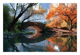 Gapstow Bridge, Fall Prints by Michael Chen