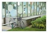 Japan Bicycle 3 Prints by Alan Blaustein