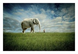 Elephant Follow Me Posters by Jeff Madison