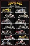 Harley Davidson Chart Affiches par  Unknown