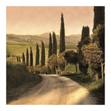 Country Lane, Tuscany Posters by Elizabeth Carmel