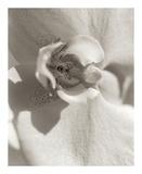 Florison 8 Print by Alan Blaustein