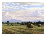 Fresh Cut Hay Print by Jay Moore