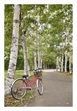 Japan Bicycle 20 Print by Alan Blaustein
