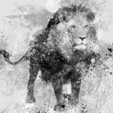 Lion Plakater av Carol Robinson