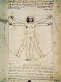 L'Uomo Vitruviano Poster by Leonardo Da Vinci