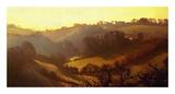 Misty Valley Prints by Noah Bay