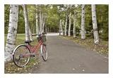Japan Bicycle 18 Prints by Alan Blaustein