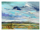 Marsh Skies Prints by Carol Hallock