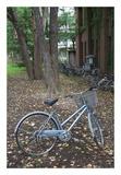 Japan Bicycle 11 Prints by Alan Blaustein