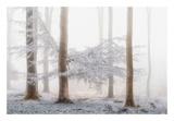 Lishka Art by Lars Van de Goor
