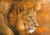 Lion du Serengeti Prints by Danielle Beck