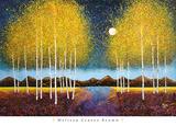 Full Moon Panorama Reprodukcje autor Melissa Graves-Brown