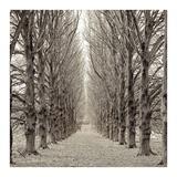 Hampton Gates Promenade #3 Reprodukcje autor Alan Blaustein