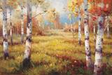 Meadow Clearing Art by Stephen Douglas