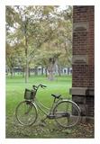 Japan Bicycle 13 Prints by Alan Blaustein