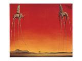 Les Eléphants Poster von Salvador Dali