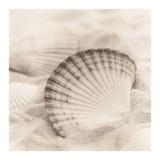La Mer 3 Posters by Alan Blaustein
