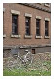 Japan Bicycle 15 Prints by Alan Blaustein