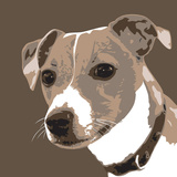 Jack Russell Posters by Emily Burrowes