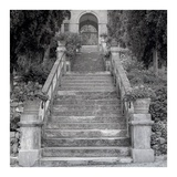 Liguria 3 Posters by Alan Blaustein