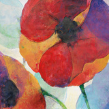 Poppy III Print by Doug Kennedy