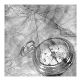 Retro- Compass Prints by Alan Blaustein