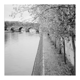 Paris 10 Prints by Alan Blaustein