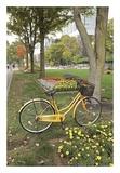 Japan Bicycle 2 Prints by Alan Blaustein